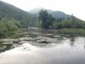 ribnik-05